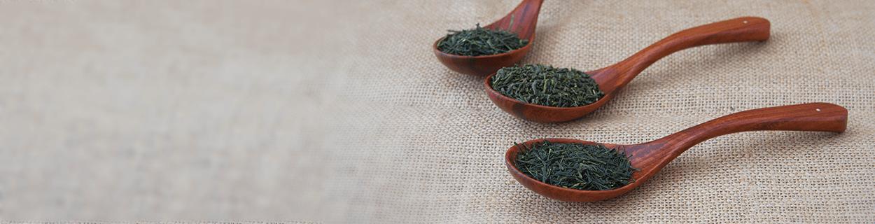Gyokuro Tee in Bio-Qualität