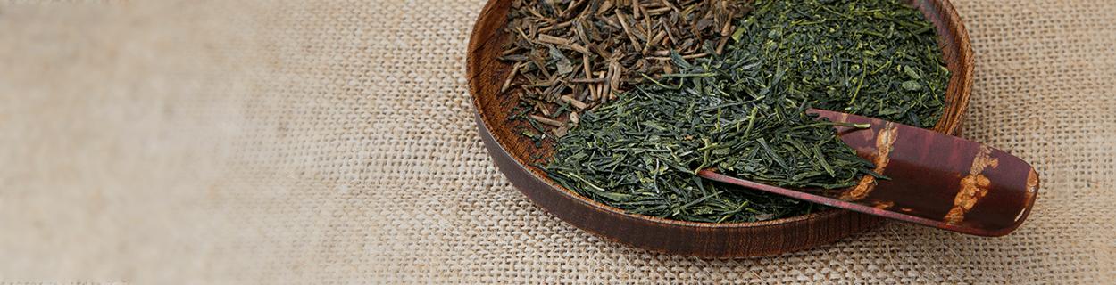Kabusecha Tee in Bio-Qualität