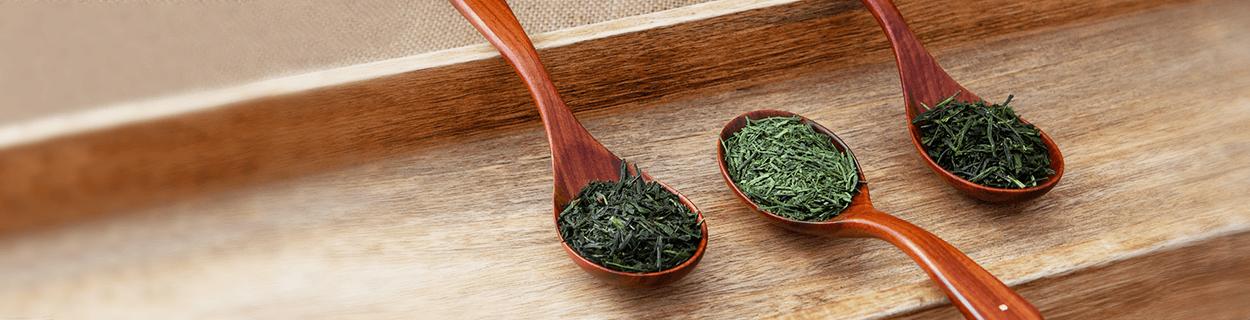 Sencha Tee in Bio-Qualität