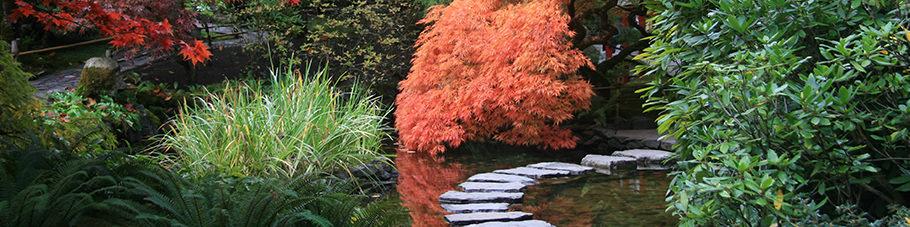 Der japanische Gartenweg
